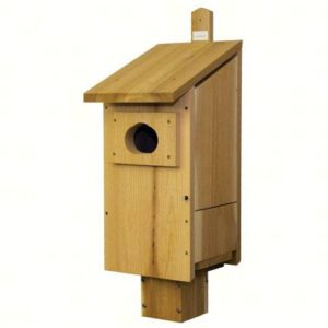 Goldcrest Wood Duck House